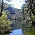 parque-nacional-huerquehue-hi