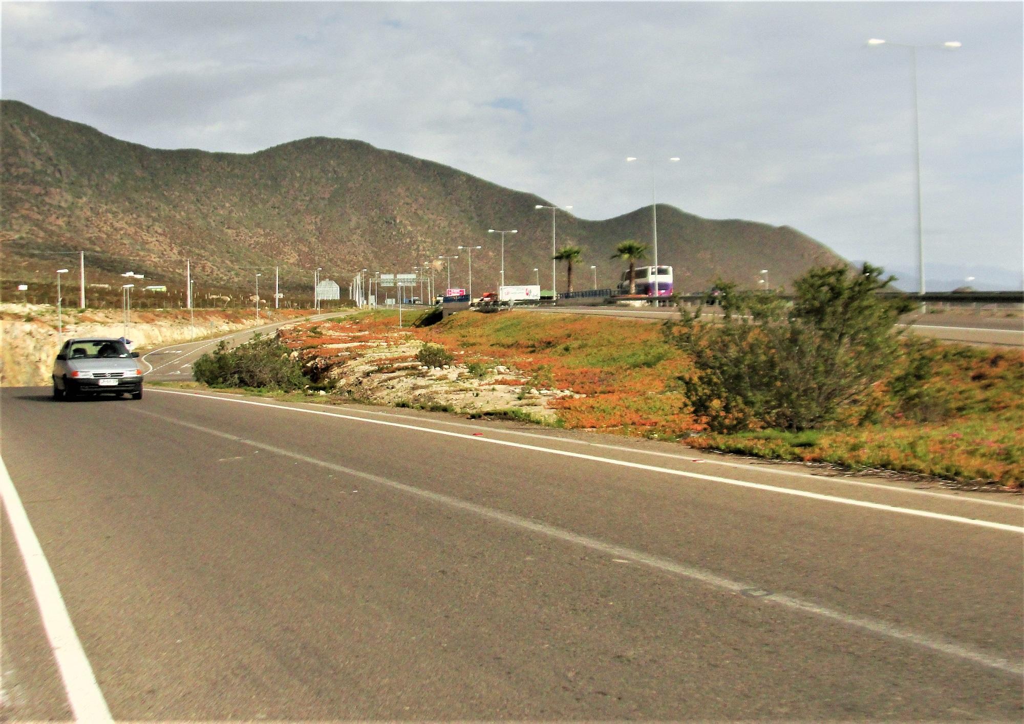 turismochile_llegar_coquimbo