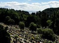 turismochile_pucon_cementerio2