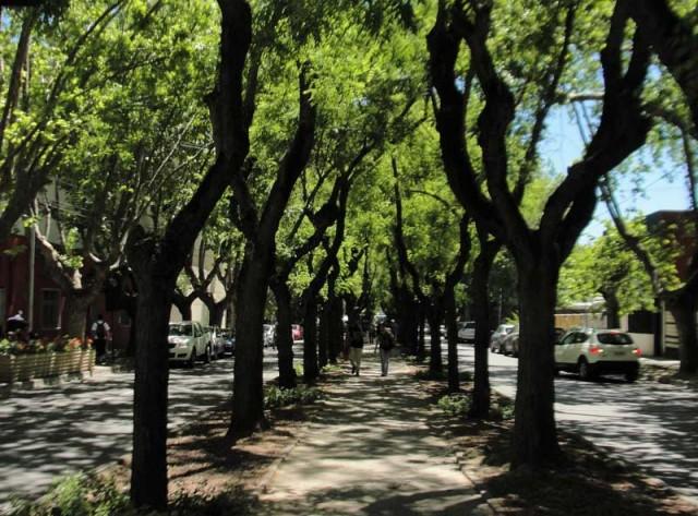 turismochile_talca_paseo