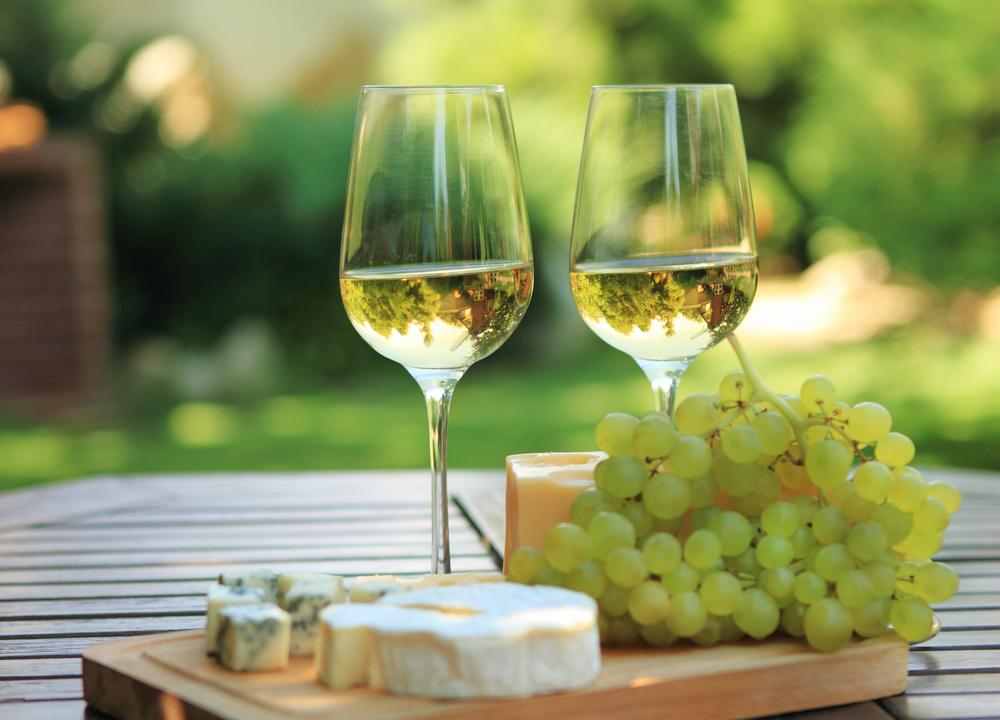 turismochile_vino